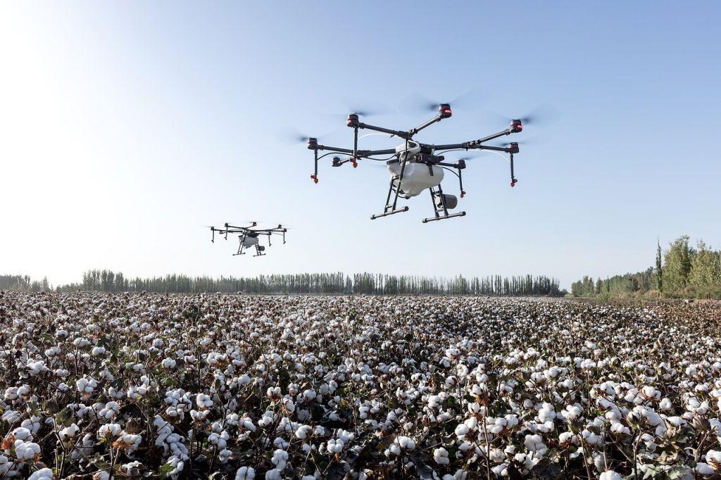 Ποιες οι δυνατότητες των αγροτικών ρομπότ
