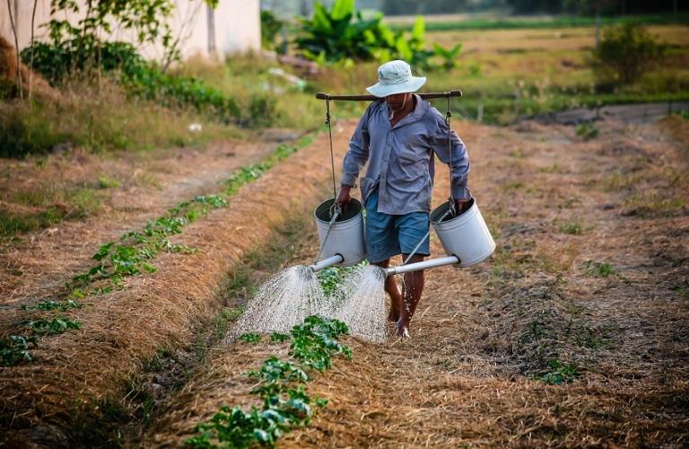 Πώς γίνεται η αίτηση για μετάκληση εργατών γης