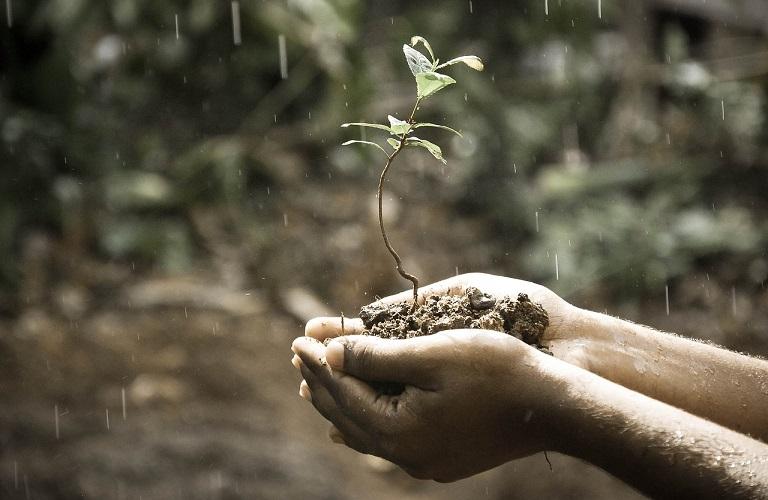 Μαθητής από τα Γιαννιτσά ο… «επίσημος» μετεωρολόγος των αγροτών