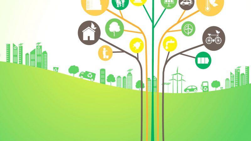 Το Interreg βοηθά στη μείωση των αποβλήτων και την προώθηση της κυκλικής οικονομίας στην Ελλάδα