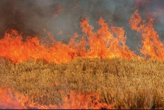 Διεύθυνση Πολιτικής Προστασίας Δυτικής Μακεδονίας: Υψηλός κίνδυνος πυρκαγιάς για σήμερα Δευτέρα 2 Αυγούστου