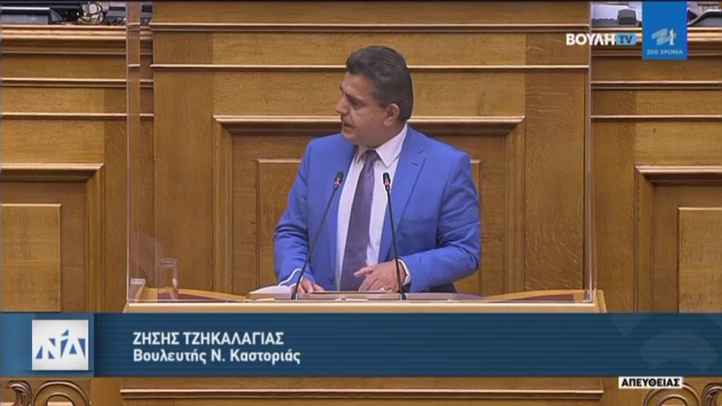 Ομιλία του Βουλευτή Ζήση Τζηκαλάγια για το ασφαλιστικό της νέας γενιάς