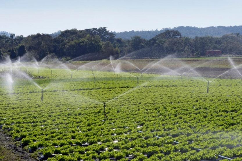 Δράση 4.1.2 «Υλοποίηση επενδύσεων που συμβάλλουν στην εξοικονόμηση ύδατος» του ΠΑΑ 2014-2020 – Παρατείνεται έως 02/11/2021 η περίοδος υποβολής προτάσεων