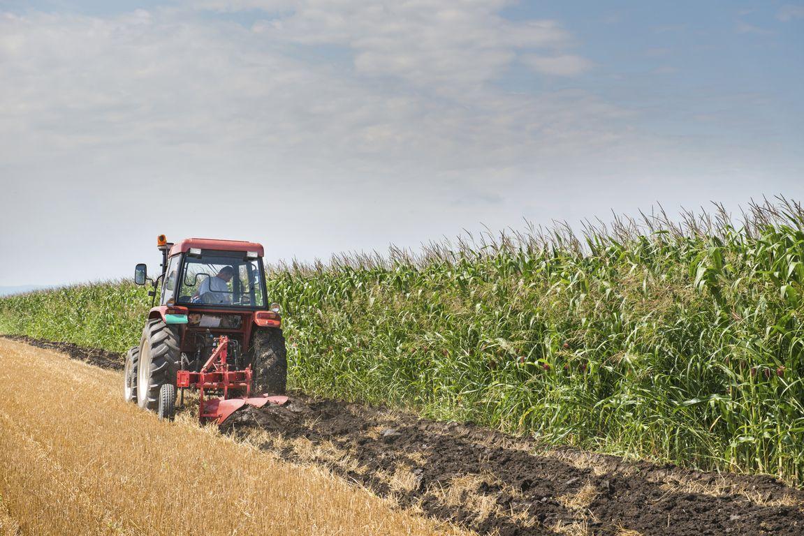 ΟΑΕΔ: Νέο πρόγραμμα κατάρτισης στον αγροτικό τομέα
