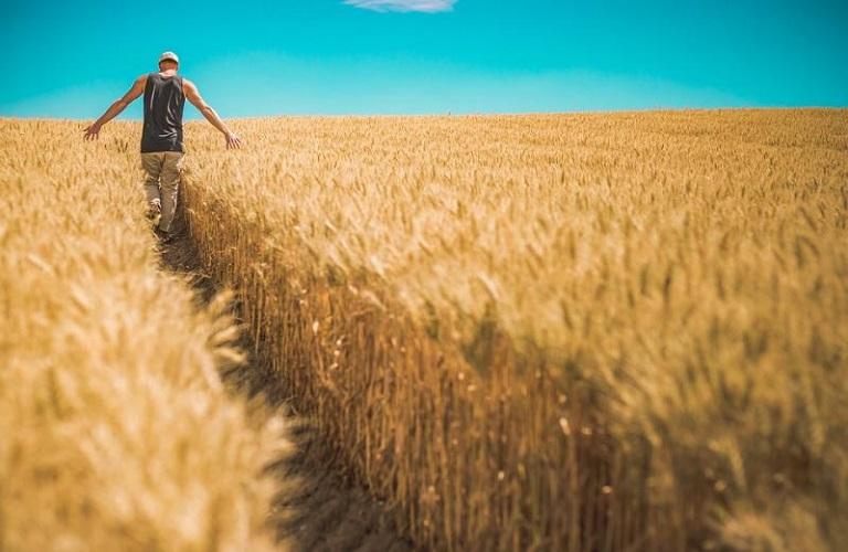 ΟΠΕΚΕΠΕ: Πώς θα γίνει ο διοικητικός έλεγχος στους νέους αγρότες
