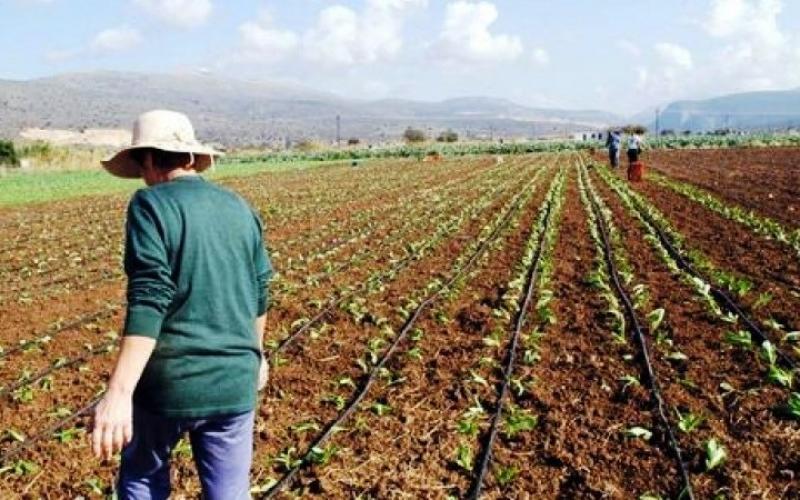 Ελληνίδα Αγρότισσα: Η ηρωΐδα της υπαίθρου με την πρωτοπόρα δράση