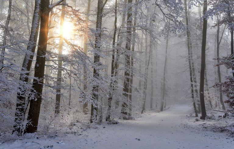 Μερομήνια: Πότε θα χιονίσει